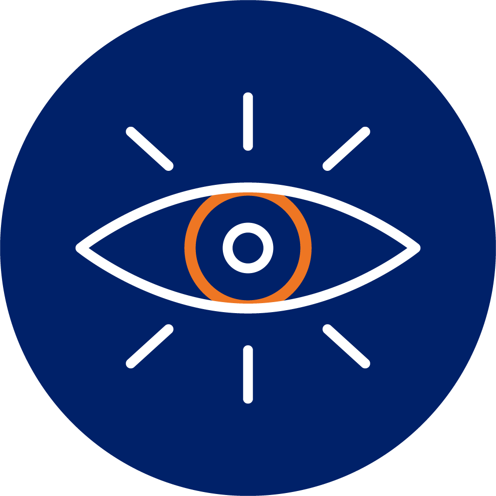 GCG Vision